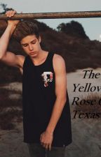 The Yellow Rose of Texas by IwishIdbeawritter