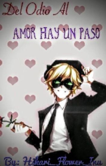 Del Odio Al Amor Hay Un Paso.... (Chat Noir Y Tu)