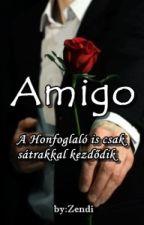 Amigo(+18) by Zendi2000