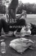 My Fake Boyfriend -cth by hellajish
