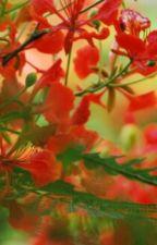 ജീവിത വഴിയിലെ ഗുൽ മോഹർ  by DivyaPb