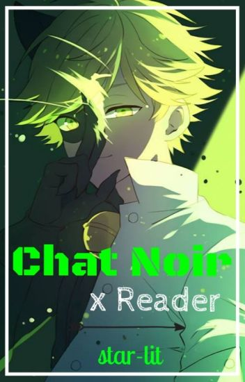 Chat Noir x Reader