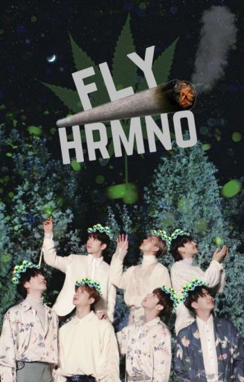 Fly Hrmno + GOT7 CHILENSIS.