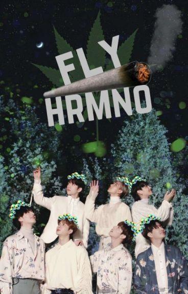 Fly Hrmno + GOT7 CHILENSIS.