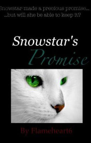Snowstar's Promise