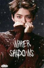 |Winter shadows|ظلال الشتاء by zainab_story