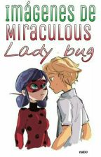 Imágenes De Miraculous Lady Bug by Xx_MajoMayorga_xX