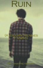 Ruin × Shawn Mendes by shawneybunny