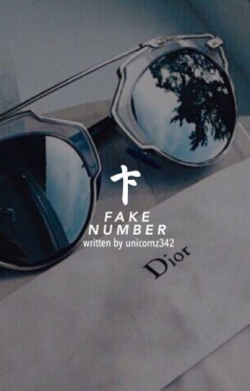 fake number ⇴ raura [editing]