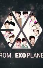 EXO Facts by ILoveBaekYeol