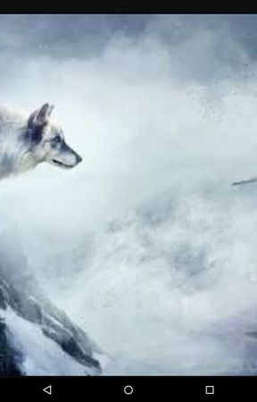 Wolfs Body Fox's Heart(Rewriting by Koni-Smol-bean