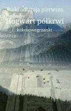 Hogwart Półkrwi | zawieszone by kokosowegrzanki