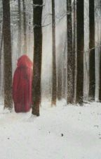 Little Red Riding Hood by FilipBorostyn