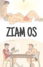 ZIAM OS. by txmlinsoul