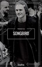 Songbird (Tradley AU) by TiredTris