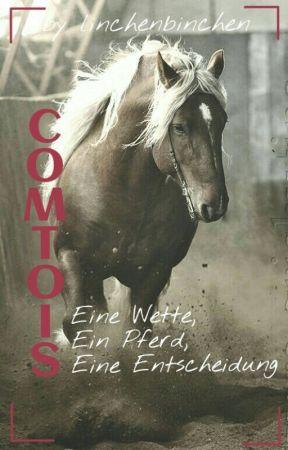 Comtois- Eine Wette, ein Pferd, eine Entscheidung #pferdesommer by linchenbinchen