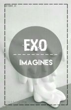 EXO IMAGINES [REQUEST BOX : OPEN] by stickeur