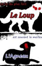 Le Loup et L'Agneau ~ [BxB] by FoxyTheBiteOf87