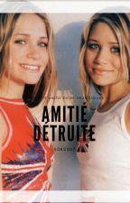 L'amitié Détruite by s082007
