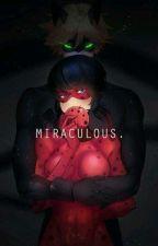 Miraculos As Aventuras  De Ladybug E Chat Noir by Vitoria29vivilady