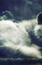 Best Werewolf Books On Wattpad  by elizabethcordova420
