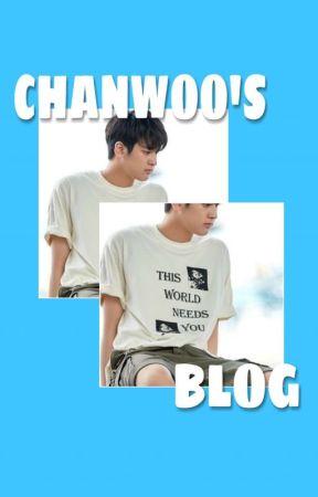 CHANWOO'S BLOG by krizkid