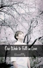 One week to Fall in Love. by HaneulFly