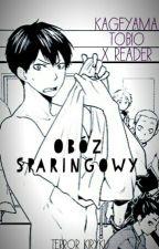 Obóz Sparingowy [Kageyama Tobio x Reader] by QTERROR