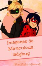 Imagenes de Miraculous Ladybug by VictoriaParra2