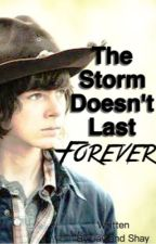 The Storm Doesn't Last Forever // Carl Grimes by chans_side_hoes