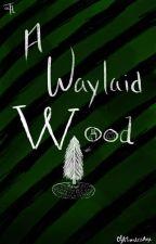 A Waylaid Wood by OfATimelessAge