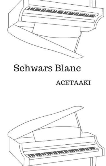 Schwarz& Blanc- Bts Yoongi smut ff