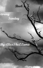 Stormy Sunday. Book 1. (Harry Potter Fanfiction) by aIive_