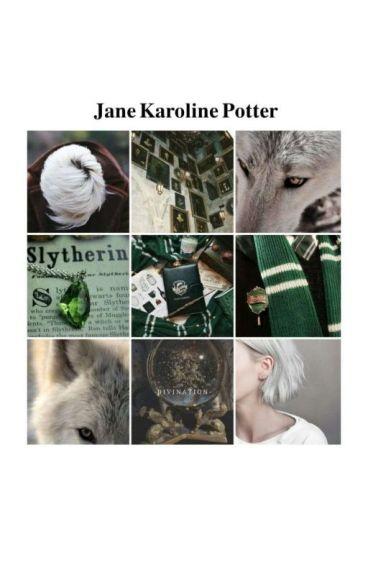 Le avventure di harry e Jane Potter.