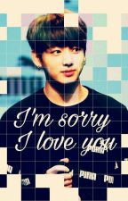 I'm Sorry I Love You ➤Jikook by senbirbtsmisin