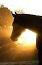 My Horse Love by IvyandAstrid