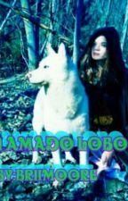 Meu Amado Lobo by briiMoOwre