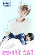 Sweet Cat [ChanBaek/BaekYeol] by AeriiPark