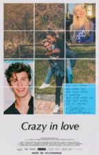 Crazy in love || Shawn Mendes by stichesexy