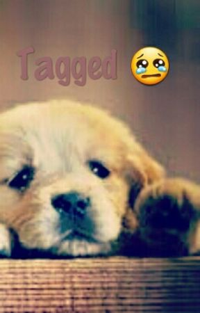 Tagged :( by Luckyx4