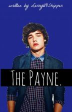 The Payne by urgaytbh