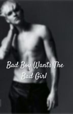 Bad Boy Wants The Bad Girl  by Sassylovely