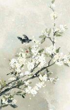 [12 Chòm Sao] Vương Gia, Ngươi Thật Biến Thái A~ by CuuBongChimte