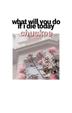 What Will You Do If I Die Today? by chuckae