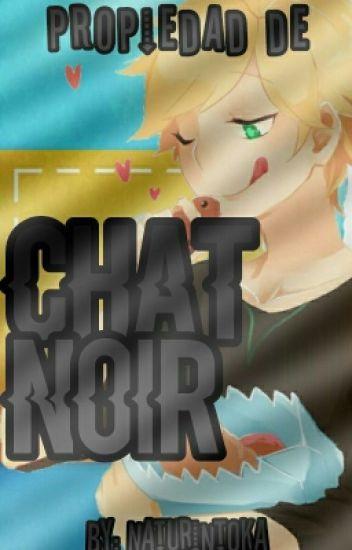 Propiedad de Chat Noir «Chat Noir y Tu»