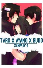 Taro x Ayano x Budo by S3NPA1314