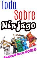 Todo sobre Ninjago #CampNinjago by AmandaVanessa300515