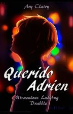 Querido Adrien (Miraculous Ladybug Drabble) by AryClairy
