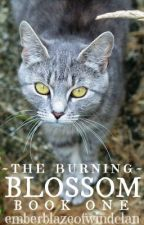 The Burning Book 1: Blossom by emberblazeofwindclan