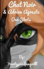 <DISCONTINUED >.   Chat Noir/ Adrien Agreste One Shots.      by Yourtypicalfangirlll